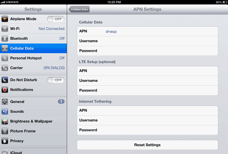 Starhub Internet APN settings for iPad screenshot
